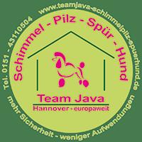Team Java