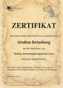Zertifikat zum Schimmelpilz Spürhund Team